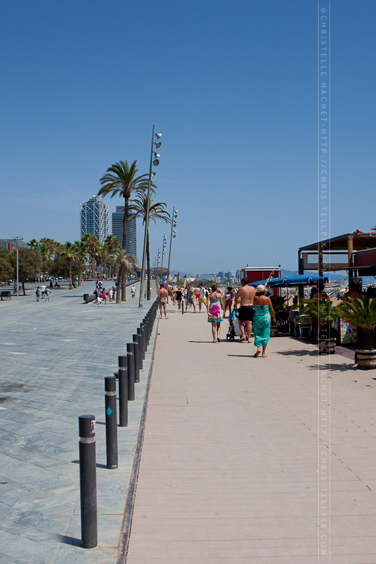 Barcelona-8178