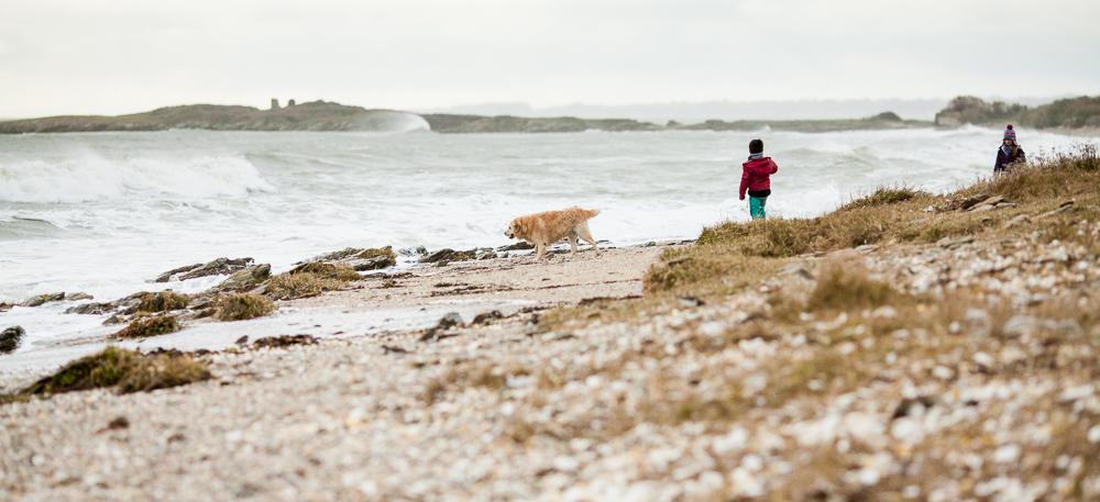 Penvins – 2015 © Christelle Hachet Photographie
